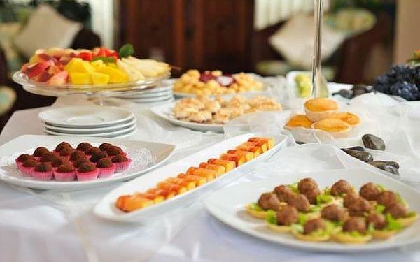 Hotel Krka, Slovinsko, Novo Mesto, Novo Mesto, vlastní doprava, snídaně v ceně2