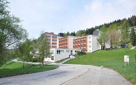 Kouty nad Desnou - Hotel DLOUHÉ STRÁNĚ, Česko