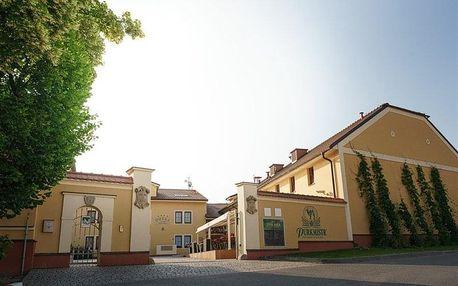 Plzeň - Pivovarský dvůr hotel PURKMISTR, Česko