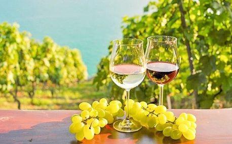 Jižní Morava v penzionu Šatovské Lípy s neomezenou konzumací vína a polopenzí