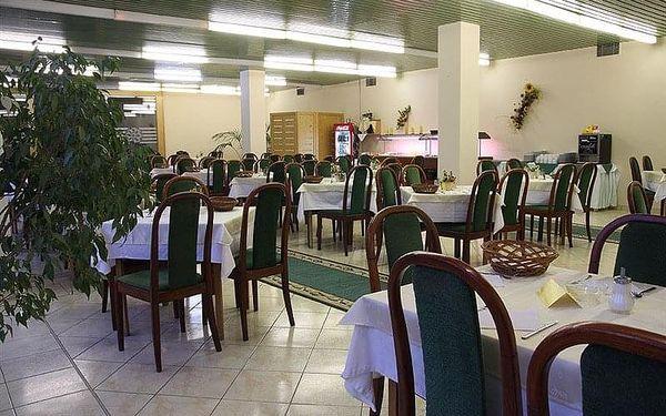 Dudince - Hotel FLÓRA, Slovensko, vlastní doprava, bez stravy2