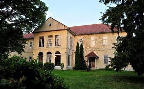 Pobyt v maďarském Fabianics Misefa Castle Hotel s wellness a polopenzí - nedaleko Hevíz a Balaton