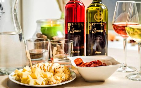 Posezení u sklenky: víno, sýry i arašídy či olivy