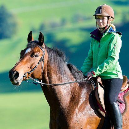 Péče o koně a projížďka: 2 či 3 hod. plné zážitků