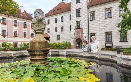 Wellness odpočinek v Třeboni - Hotel Zlatá Hvězda