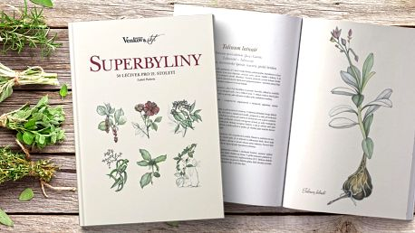 Kniha Superbyliny – 50 léčivek pro 21. století
