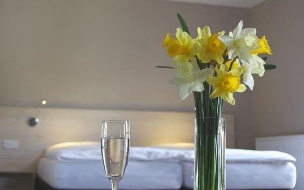 Dvoulůžkový pokoj Superior s manželskou postelí5