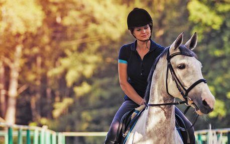 Projížďky na koních a ponících pro děti i dospělé