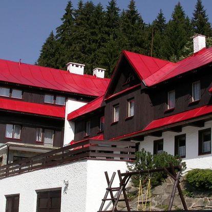 Léto v Krkonoších: ubytování s polopenzí