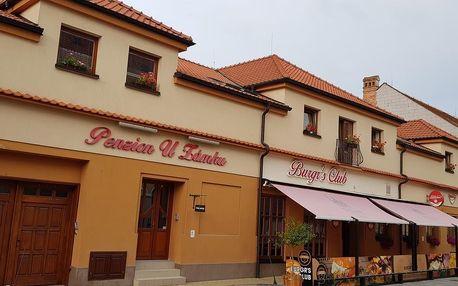 Jižní Morava: Penzion U Zámku