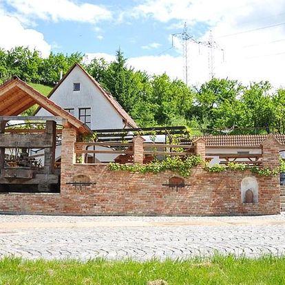 Kouzelné dny na jižní Moravě s polopenzí i vínem