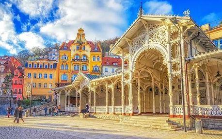 Karlovy Vary v Hotelu Petr *** s polopenzí a vstupem do Alžbětiných lázní