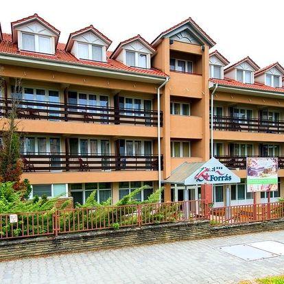 Maďarsko: Hotel Forrás *** Zalakaros