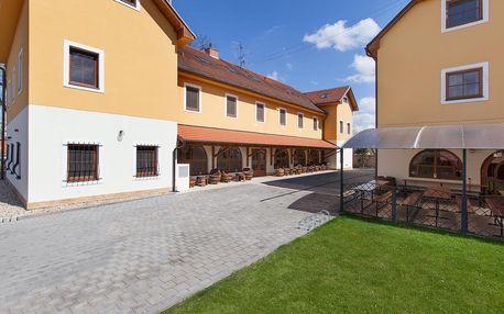 Jižní Morava: Penzion Onyx Lednice