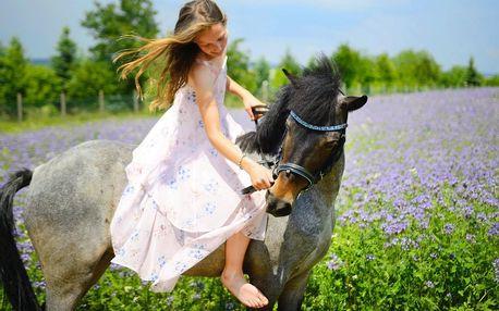 Užijte si den u koní včetně jízdy a přípravy