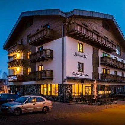 Vysoké Tatry pro rodiny ve Vile Borievka 1 km od skiareálu + 2 děti v ceně