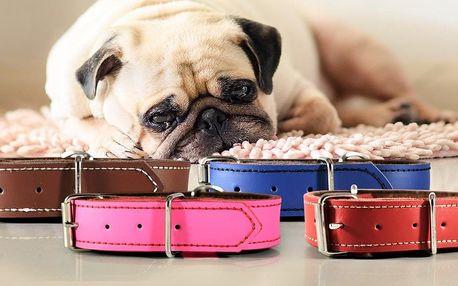 Ručně vyráběné kožené obojky české výroby pro psy