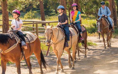 Letní jezdecký výcvik: dětský tábor s koňmi