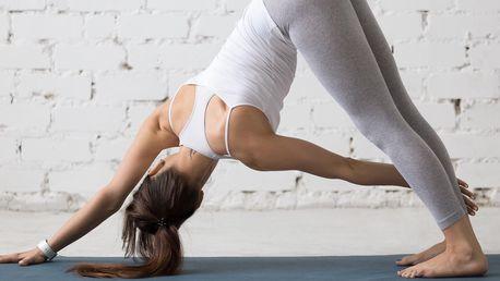 Léto s jógou v Eka Yoga Space: 1–5 lekcí