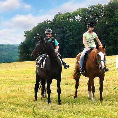 Vyjížďka na koni do přírody: 1 nebo 2 hodiny v sedle