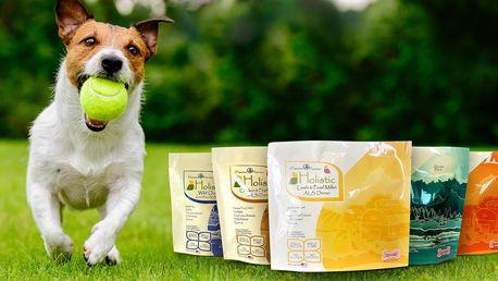 Holistické psí krmivo pro štěňata, feny i seniory