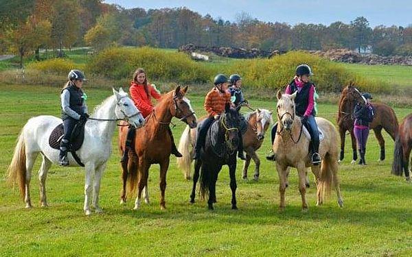 Dvouhodinová vyjížďka na koni pro mírně pokročilé jezdce do 70 kg5
