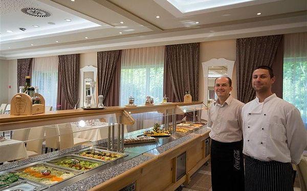 Veľký Meder - Hotely THERMAL VARGA a AQUA, Slovensko, vlastní doprava, polopenze3
