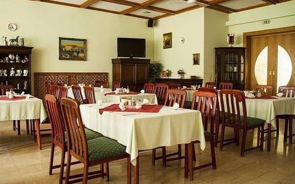 Hotel Komfort Platán, Maďarsko, Termální lázně Maďarsko, Harkány, vlastní doprava, snídaně v ceně3