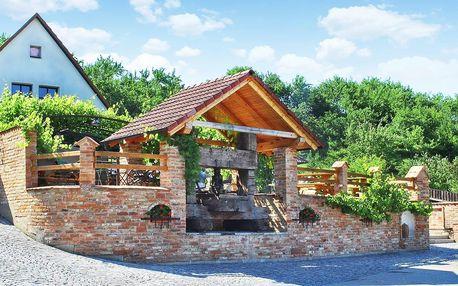 Pobyt u vinohradu na jižní Moravě: polopenze, víno
