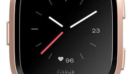 Fitbit Versa (NFC) - Merlot Band / Rose Gold Case (FB505RGRD-EU)