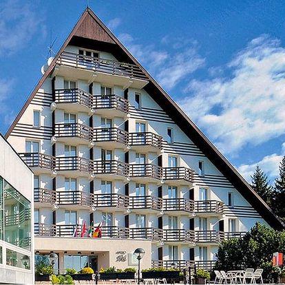 Vysočina: Žďárské vrchy v hotelu s polopenzí, lahví vína a wellness každý den