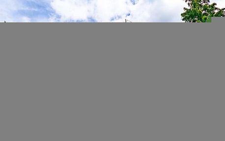 Luhačovice ve Vládní vile v lázeňském parku s polopenzí + vstup do aquacentra
