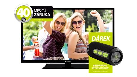 Televize GoGEN TVF 32R21 DE černá