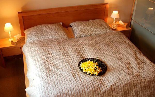 Dvoulůžkový pokoj s manželskou postelí a výhledem na hory.3