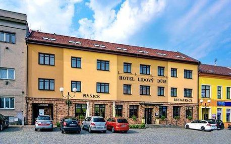 Jižní Morava s vínem, degustací a polopenzí v Hotelu Lidový dům ***