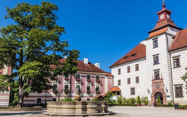 Pobyt v Třeboni s polopenzí a bazénem