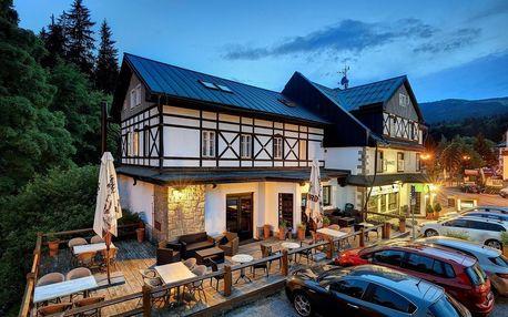 Krkonoše: Hotel Lomnice ***