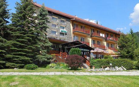 Letní pobyt v Nízkých Tatrách jako stvořený pro rodinu