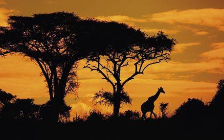 Keňa - Poznávací zájezdy letecky na 10 dnů, all inclusive