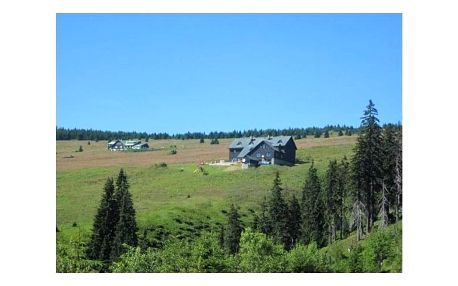 Last minute letní pobyt na chatě Malá Rennerovka. Příjemná atmosféra a domácí prostředí.