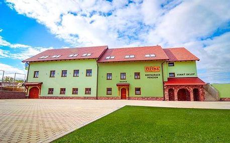 Jižní Morava v moderním Penzionu Čičina s řízenou degustací vín a polopenzí