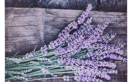 Obraz na plátně Nantes Lavender, 78 x 58,5 cm