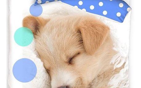 BedTex Bavlněné povlečení Sleeping Little Dog, 140 x 200 cm, 70 x 90 cm
