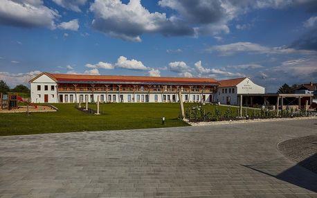 Mikulov: Hotel Ryzlink