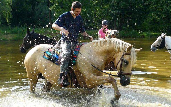 Hodinová vyjížďka na koni pro děti a začátečníky do 100 kg3