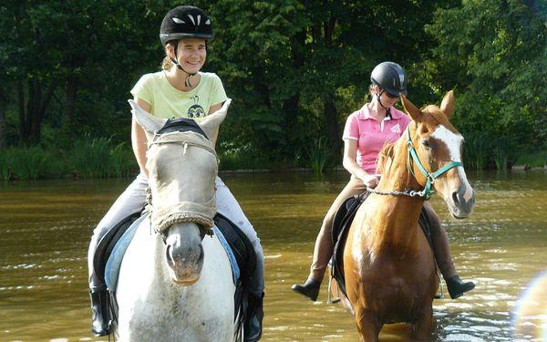 Hodinová vyjížďka na koni pro děti a začátečníky do 100 kg4