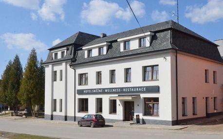 Vysočina: Hotel Sněžné