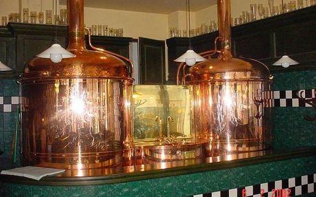Prohlídka pivovaru spojená s degustací