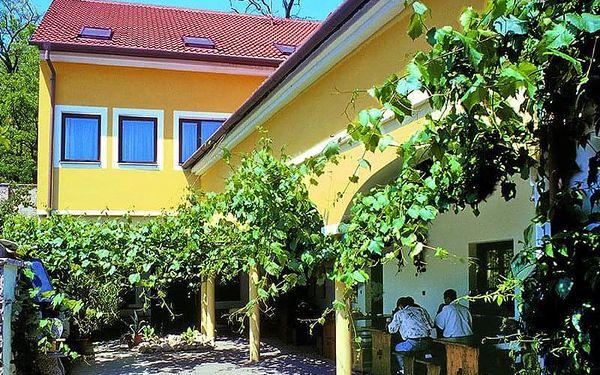 Jižní Morava v hotelu s degustací vína a prohlídkou pivovaru + předplacený kredit na konzumaci