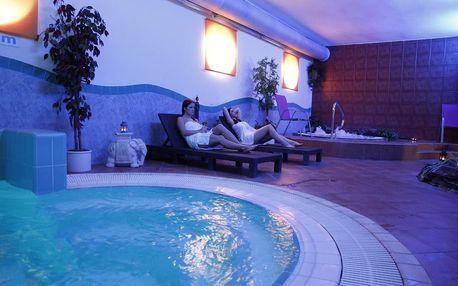 Uherské Hradiště: Wellness Hotel Synot